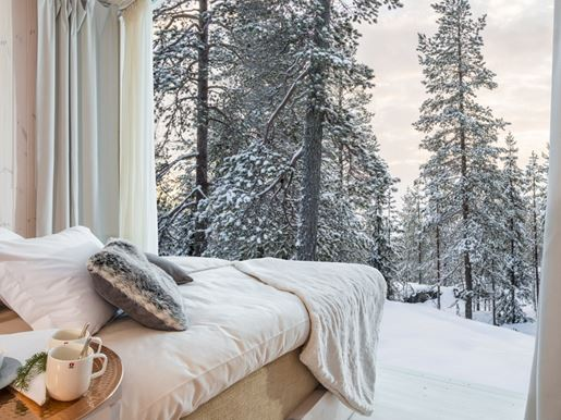 5 Arctic TreeHouse Hotel_Suite with double bed.jpg