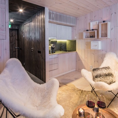 6 Arctic TreeHouse Hotel_Suite with Kitchenette.jpg