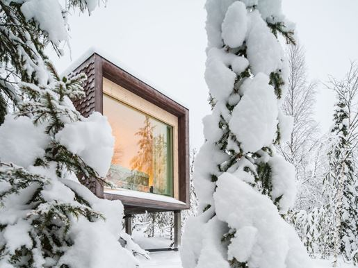 3 Arctic TreeHouse Hotel_Suite_ Winter view.jpg (1)