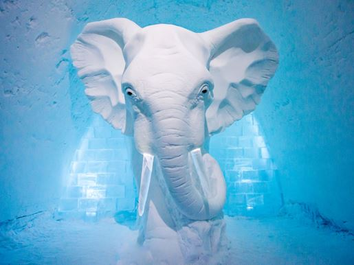 Large Art Suite Elephant In The Room Icehotel Swedenv2